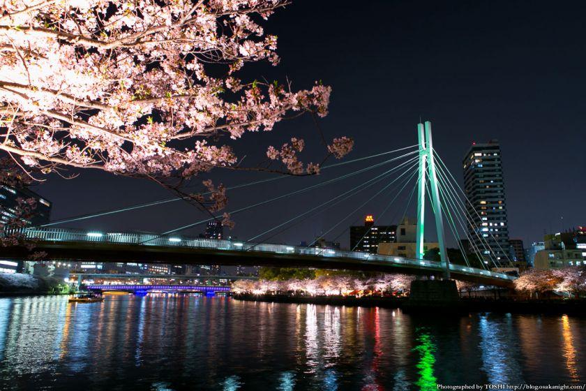 夜桜と川崎橋。写真:堀寿伸 https://blog.osakanight.com/